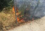 Μικρή Εστία φωτιάς