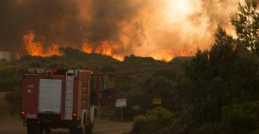 Φωτιά στο δάσος της Στροφυλιάς , Κρανίου τόπος τα Κύθηρα