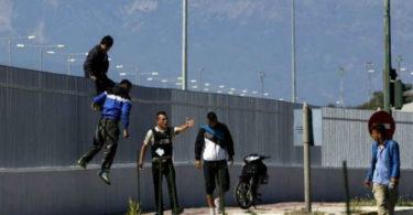 μεταναστευτικό αναβιώνει