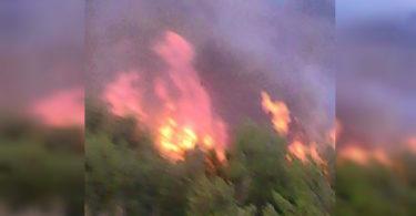 Φωτιά στην Χαραυγή Αχαΐας